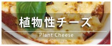 植物性チーズ